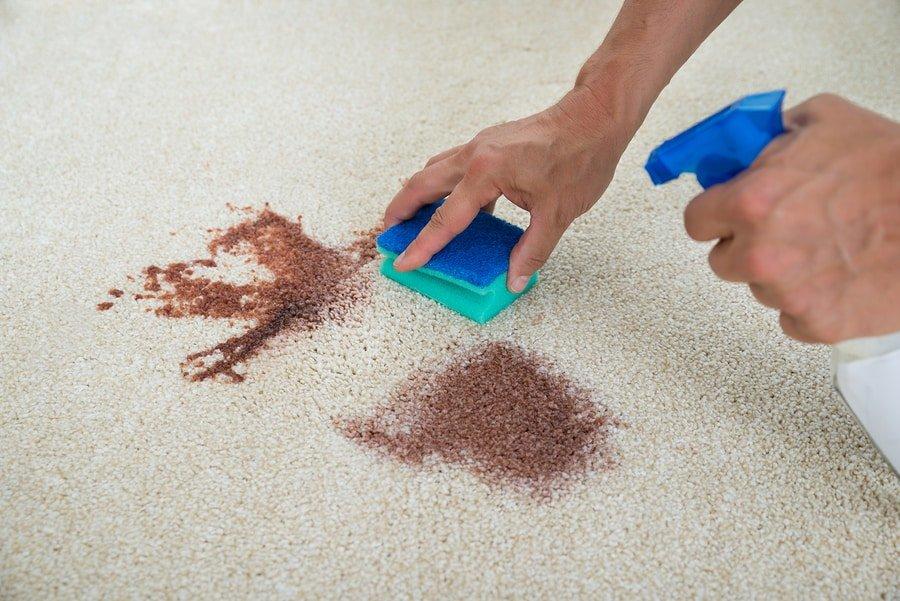 طريقة تنظيف السجاد